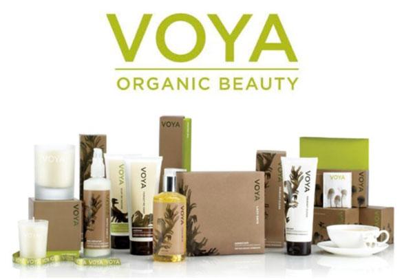 Voya's logo and brand colour scheme