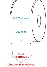120 mm x 300 mm Étiquettes à rouleaux