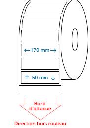 170 mm x 50 mm Étiquettes à rouleaux