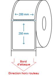 200 mm x 250 mm Étiquettes à rouleaux