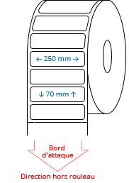 250 mm x 70 mm Étiquettes à rouleaux